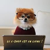 Ça y'est!! 🎉 On est trop heureuses de vous annoncer que notre site de vente en ligne est actif !! C'est un début, il y aura des nouveautés sur le site toutes les semaines 😀 ✨Le lien du site est dans la bio✨ Prenez soin de vous et bon week-end !! With LOVE ❤️ 🤜🏼La team TDF🤛🏼 . . #eshop #terredefemmes #bijoux #terredefemmesbijoux #rennes #saintbrieuc #brest #venteenligne #ecommerce #commercedeproximite